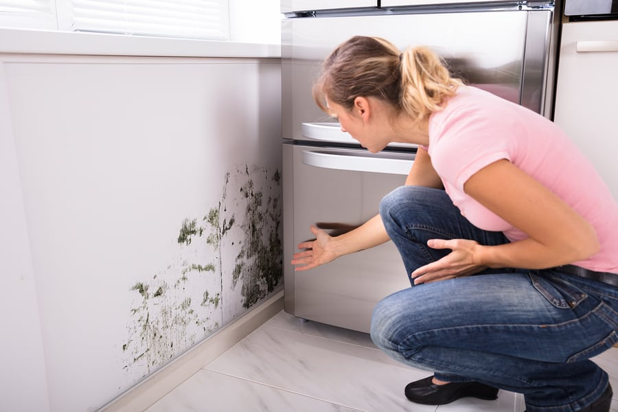 a woman who found mold in her home